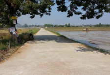 Land For Sale in Ban Nongheo (ບ້ານ ຫນອງແຫ້ວ)